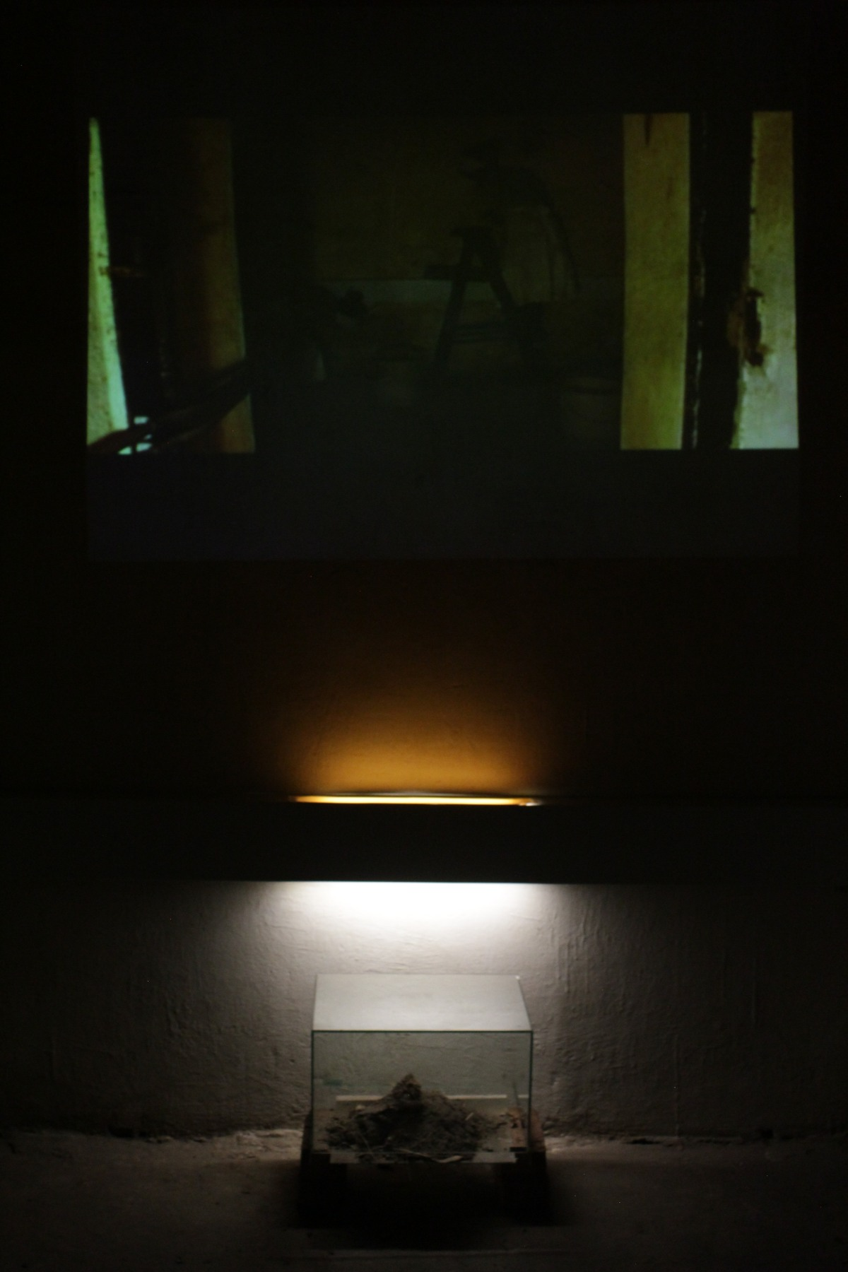 installation-view-rituals-of-the-living-2